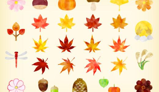 【体験談】駐車場予約アプリakippaの評判!京都の紅葉も駐車場予約で時間を気にせず楽しめる